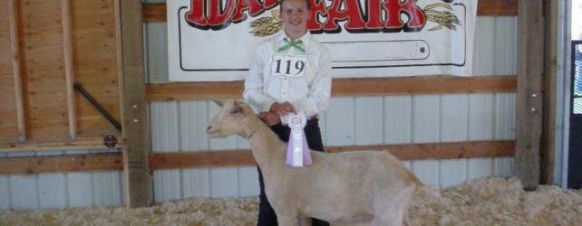 Get Ready for the 2012 Idaho County Fair – Cottonwood Fairgrounds